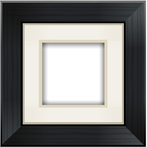 Aviary Frames: Original Android