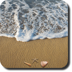 Beach Live Wallpaper + Android