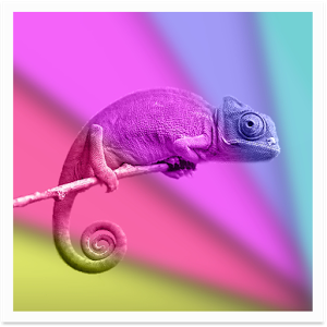 Chameleon Color Adapting LWP Android