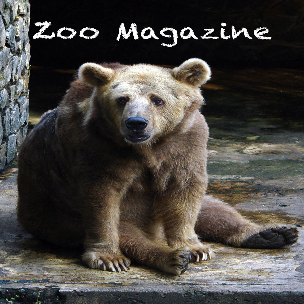 Zoo Magazine Ios